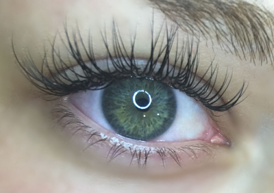 independence heights eyelash extensions 77018 tx houston